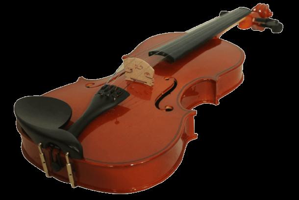 Windsor MI-1008 violin brand to avoid